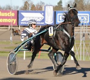 Orecchietti imponerade i comebacken. Foto: travfilosofen.se