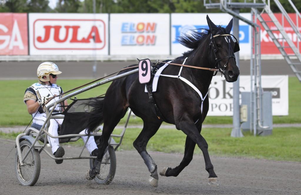 Denim Boko (s3 e. Chocolatier) var bara seg från tredje ytter. / Foto: travfilosofen.se