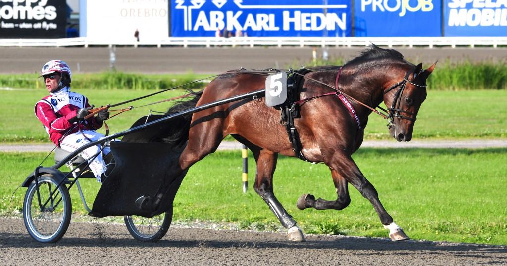 Olympic Kronos och Ludde. Foto: travfilosofen.se