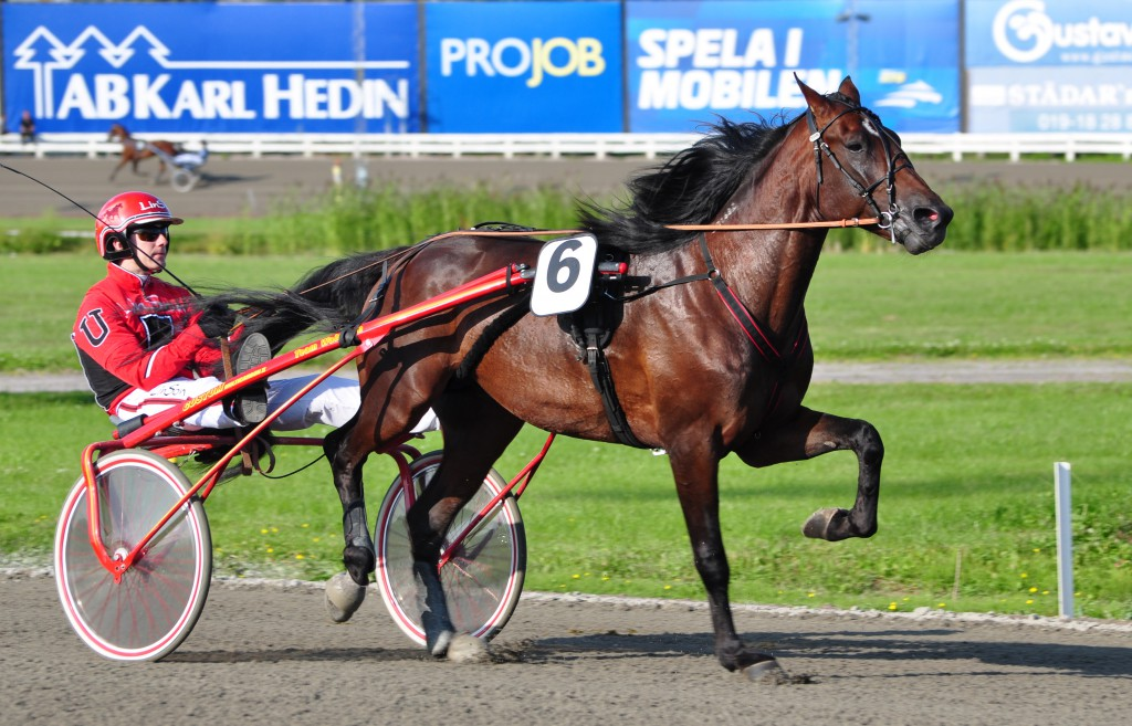 Carelin och Johan, vinnare på varsitt håll. Foto: travfilosofen.se