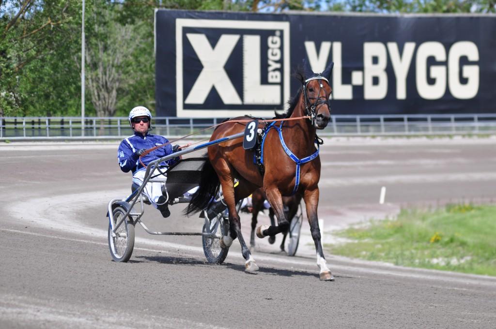 Face Em vann Svenskt Travoaks. Foto: travfilosofen.se