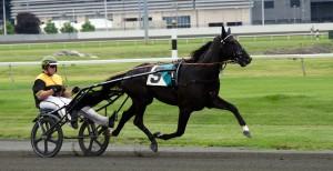 Nuncio (h3 e. Andover Hall) vann Sprintermästaren. Foto: Gunnel Jakobsson