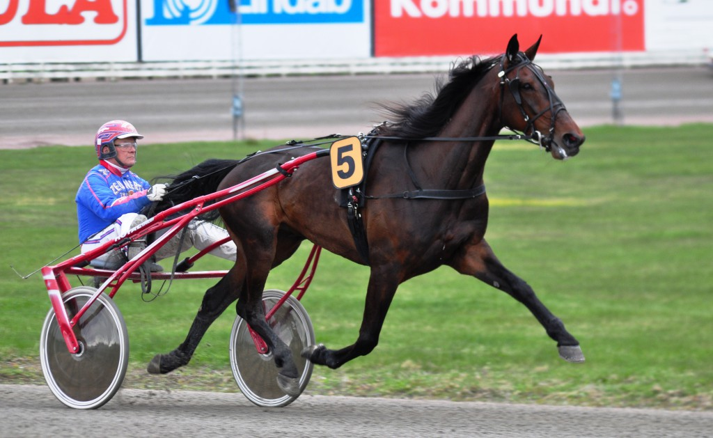 Jeppas Maxi vann inte, men godkänd. Foto: travfilosofen.se