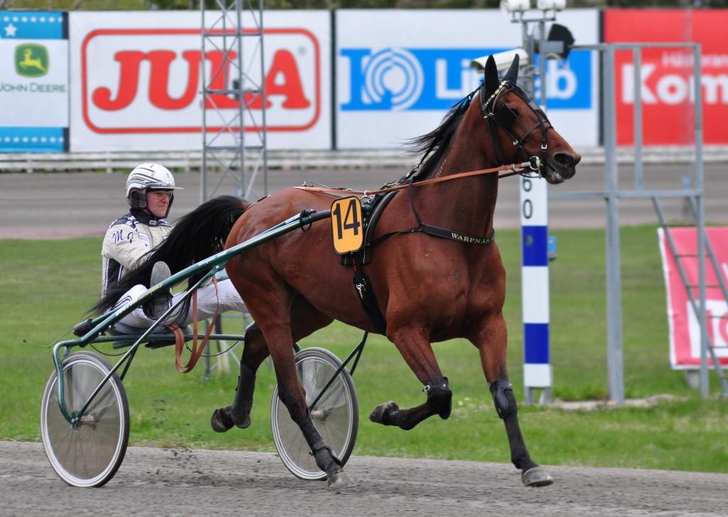 On Hold vann överraskande Örebro International. Foto: travfilosofen.se